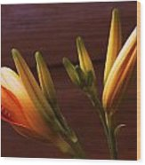 Orange Daylily Wood Print