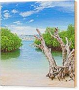 Panorama Island Wood Print