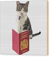 Pet Passport Wood Print
