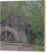 Photograph 600 Wood Print