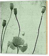 Poppy Art Image Wood Print