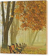 Red Benches In The Park Wood Print