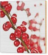 Red Christmas Berries Wood Print by Elena Elisseeva