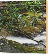 Rhododendron And Waterfall Wood Print