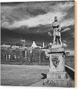 robert the bruce statue at stirling castle Scotland UK Wood Print