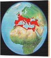 Roman Empire, Artwork Wood Print by Gary Hincks