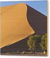 Sand Dune, Namibia, Africa Wood Print
