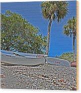 Sarasota Bayfront  Wood Print