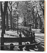 Scenes From Central Park Wood Print