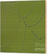 Spiderweb Wood Print by Odon Czintos