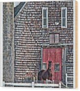Stoudwater Delight Wood Print