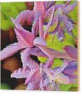 Succulent Blossom Wood Print