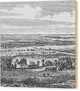 Suez Canal, 1869 Wood Print