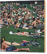 Summer In Central Park Wood Print