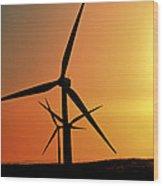 Sun Glare Upon Alberta Windfarm Wood Print