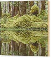 Swamp Wood Print by David Nunuk