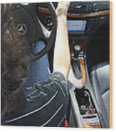Texting And Driving Wood Print by Photo Researchers, Inc.