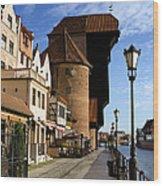 The Crane In Gdansk Wood Print