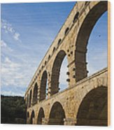 The Famous Pont Du Gare In France Wood Print