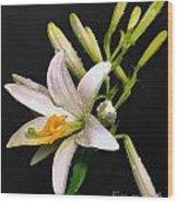 The Lily Wood Print by Odon Czintos