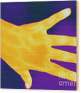 Thermogram Of A Hand Wood Print