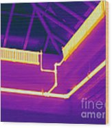 Thermogram Of Steam Pipes Wood Print