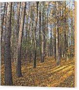 Tree Wood Print