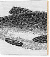 Trout Wood Print