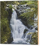Waterfalls Of Sol Duc River, Olympic Wood Print