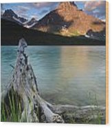 Waterfowl Lake Wood Print