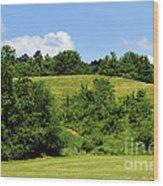 West Virginia Farm Wood Print