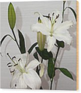 White Lily Spray Wood Print