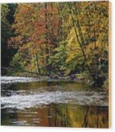 Williams River Autumn Wood Print