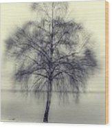 Winter Tree Wood Print by Joana Kruse