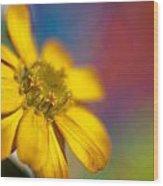 Yellow  Wood Print by Al Hurley