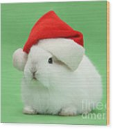 Young White Rabbit Wearing A Christmas Wood Print