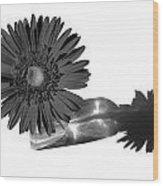 2002a2-002 Wood Print