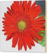 2003a1 Wood Print