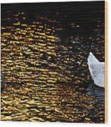 2005 Wood Print