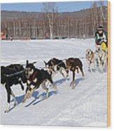 2010 Limited North American Sled Dog Race Wood Print