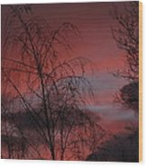 2011 Sunset 1 Wood Print