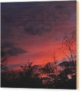 2012 Sunrise In My Back Yard Wood Print