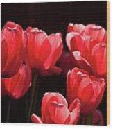 2012 Tulips 02 Wood Print