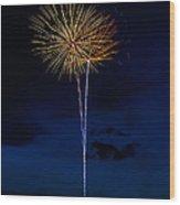 20120706-dsc06441 Wood Print