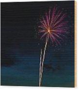 20120706-dsc06444 Wood Print