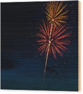 20120706-dsc06445 Wood Print