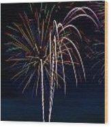 20120706-dsc06454 Wood Print