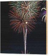 20120706-dsc06462 Wood Print