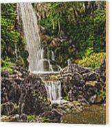 20120915-dsc09800 Wood Print