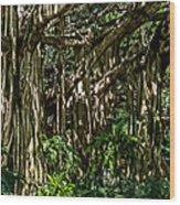 20120915-dsc09877 Wood Print